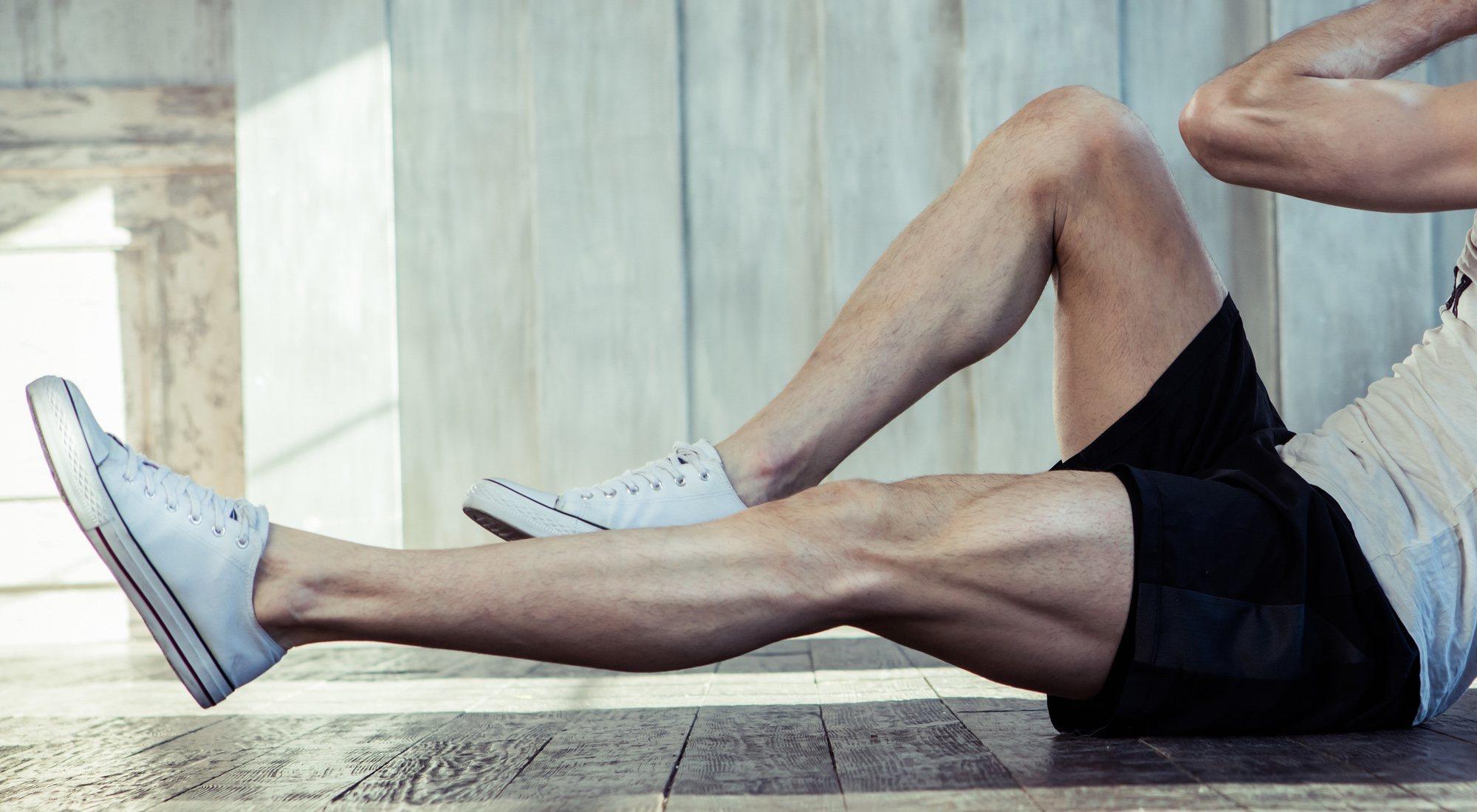 Musculos piernas aparato locomotor