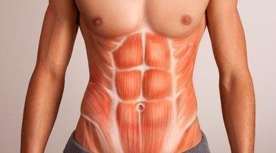 Músculos del abdomen: cuáles son y cómo puedo fortalecerlos