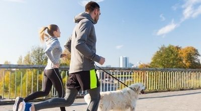 Hacer deporte con tu perro: tipos, beneficios y consejos