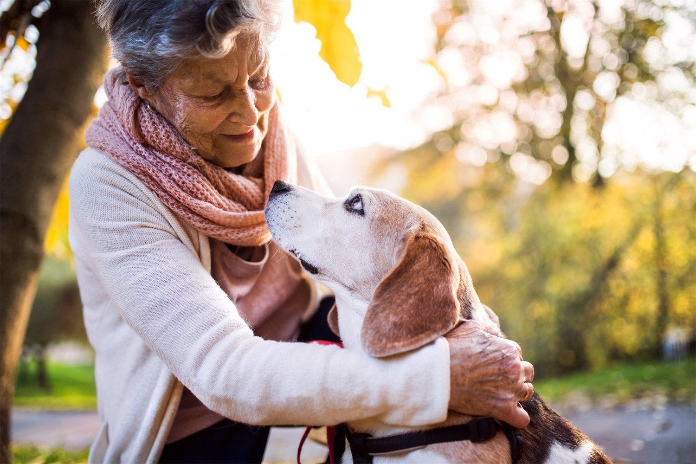 Los perros son buena compañía (y a veces la única), para muchas personas mayores
