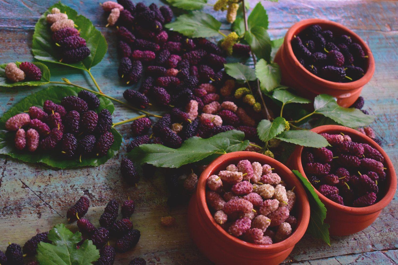Los arándanos, las moras y las frambuesas son ricas en vitamina K.